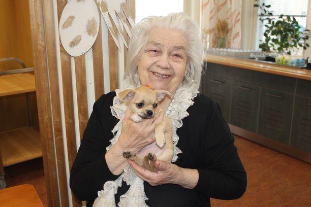 Pieni Pipsa-koira sulatti Eeva-Katariina Autereen sydämen.