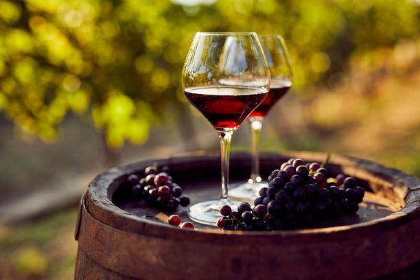 Tilkka punaviiniä voi rentouttaa mukavasti, mutta jos punaviinistä halutaan sen sisältämän resveratrolin todellisia hyötyjä, punaviiniä pitäisi juoda 200 pullollista - joka päivä!