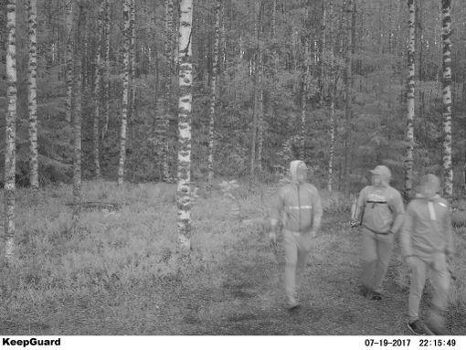 Pohjois-Karjalan Kalatalouskeskus ry:n toimittamissa kuvissa näkyy salakalastuksesta epäiltyjä, jotka ovat tallentuneet mm. valvontakameroihin.