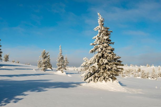 Utsjoki-Kevojärvellä on mitattu talven pakkasennätys. Alueella on selkeä sää ja erittäin kylmää ilmamassaa. Kuvituskuva.