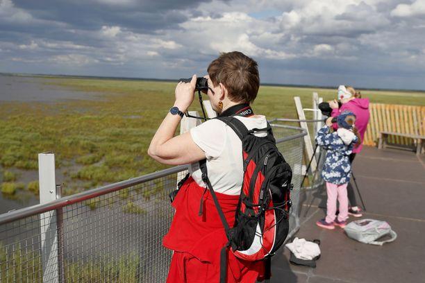 Liminganlahden kosteikkoalue on oiva paikka lintujen tarkkailuun.