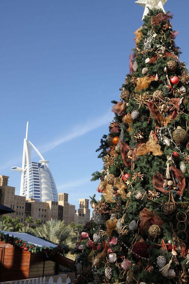 Joulukuusia näkyy kaupungillakin.