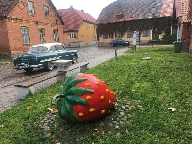 Eri puolilla Viljandia törmää suuriin betonisiin mansikoihin. Marja on otettu kaupungin symboliksi taiteilija Paul Kondasin maalaamasta taulusta Mansikansyöjät.