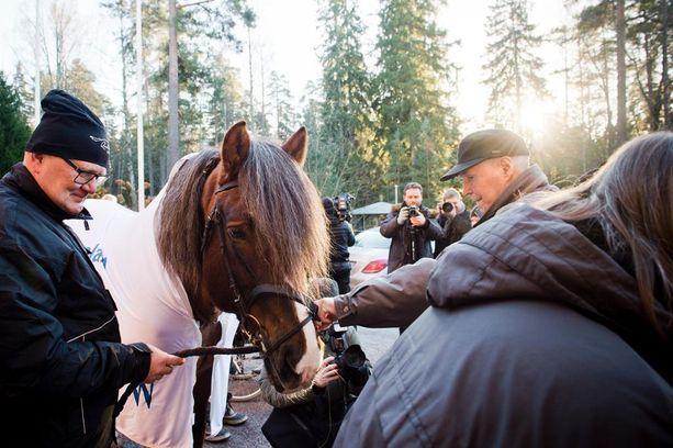 Kiripassi-hevonen vieraili Kaunialan sairaalassa jouluun ensimmäisenä päivänä.