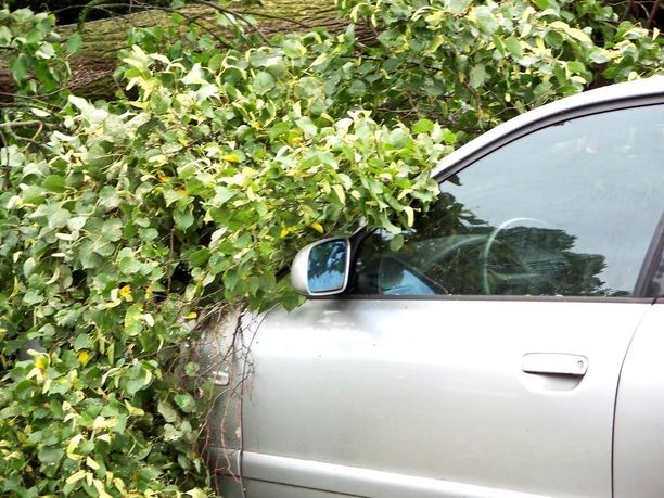 Tyypillinen kaskovakuutus tarjoaa auton omistajalle turvan tilanteessa, jossa vaikkapa puu kaatuu auton päälle. Täyskasko korvaa lähtökohtaisesti myös vesivahingon, mikäli autolla ei ajeta.