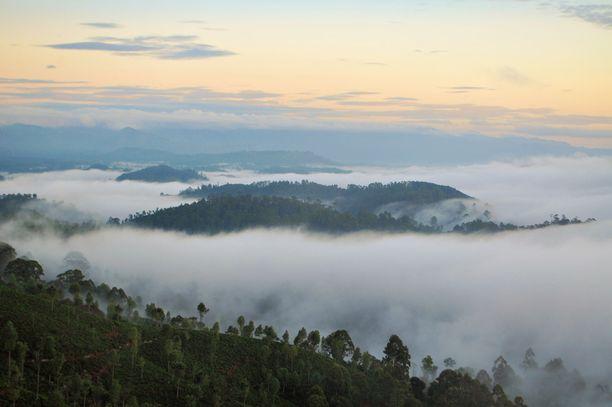 Sri Lanka tarjoaa elämyksiä monenlaisille matkailijoille.