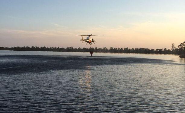 Sammutustöihin osallistuu myös rajavartiolaitoksen helikopteri. Kuva on otettu Kauhalammilla Kauhanevan-Pohjankankaan kansallispuistossa.