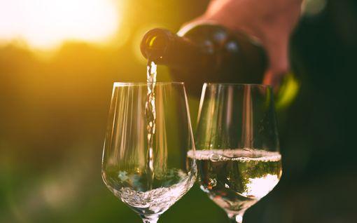 """Kahdeksan raikasta viiniä kympillä – """"hintaansa nähden löytö"""""""