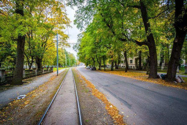 Lehtiä on putoillut Weizenbergi-kadun raitiovaunukiskoille.