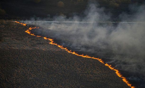 Suurta metsäpaloa on vaikeuksia saada sammumaan vähien sammutustarpeiden takia.