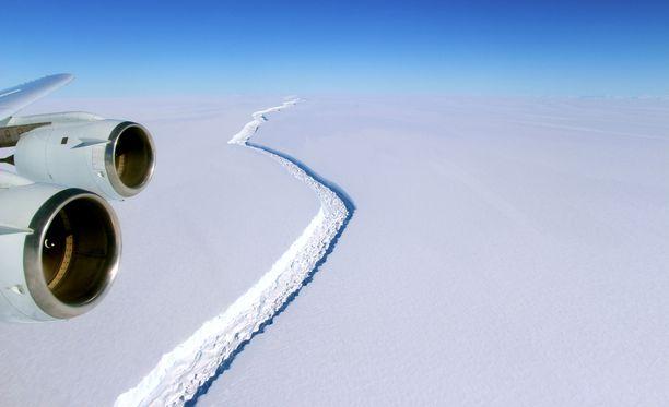 Nasan julkaisemassa 18. marraskuuta 2016 otetussa kuvassa näkyy massiivinen railo Larsen C -jäähyllyssä. Valtavan jäälautan odotetaan murtautuvan irti jossain vaiheessa.