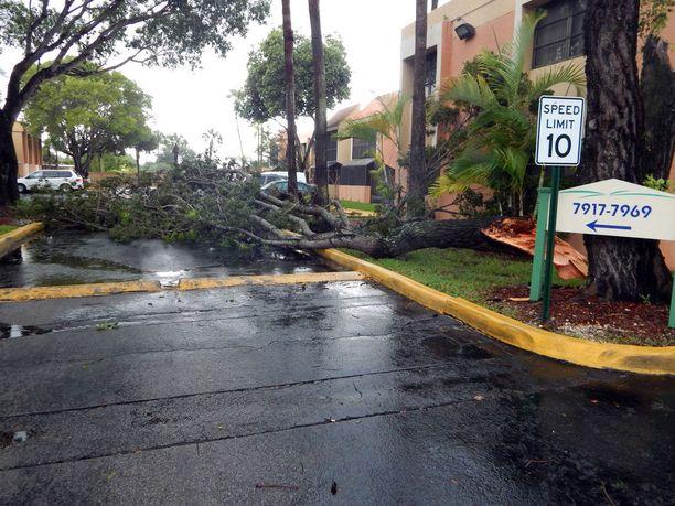 Ensimmäiset hurrikaanituulet ovat jo saapuneet Floridan Miamiin, ja tehneet tuhojaan.
