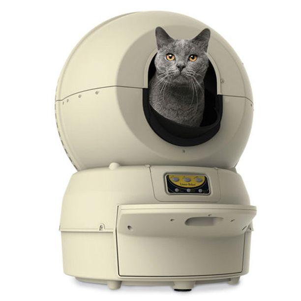 Robottilaatikossa kelpaa kissan käydä.