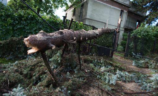 Myrskyt ovat tehneet tuhojaan Puolassa.