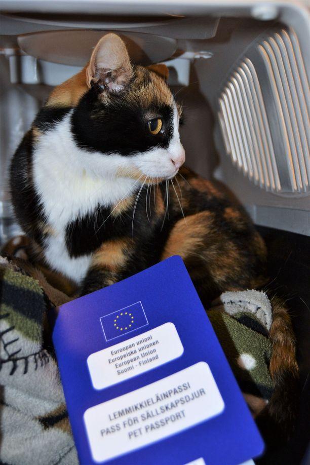 Selma (kuvassa) tarvitsee passin, jotta se voi päästä takaisin Ruotsiin.