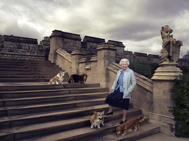 Vielä vuonna 2016 kuningattarella oli neljä koiraa.