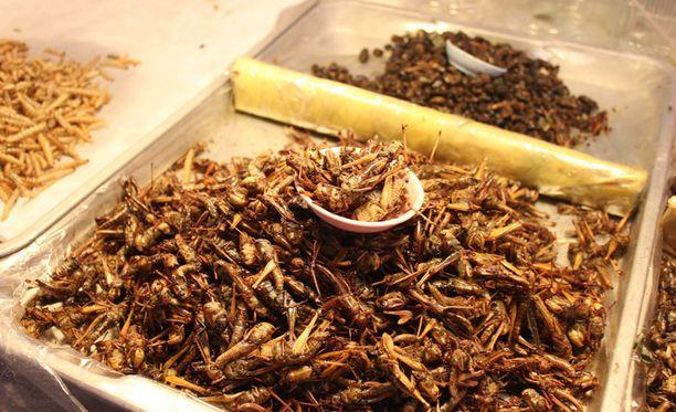 Hyönteiset kuuluvat jo jopa kahden miljardin ihmisen ruokavalioon.