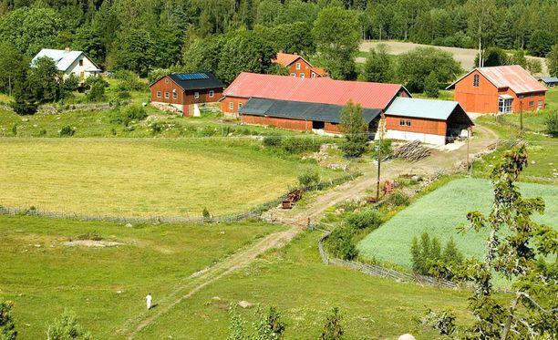 Ahvenanmaan pinta-alaltaan laajimmassa kunnassa Saltvikissa vain hieman yli puolet äänioikeutetuista kävi uurnalla. Kuvassa maatila Saltvikissa.