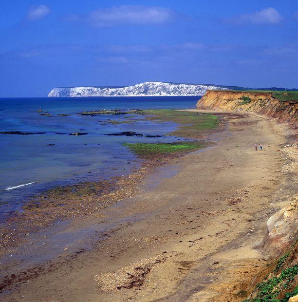 Compton Bayn rantakallioista voi etsiä merkkejä fossiileista.