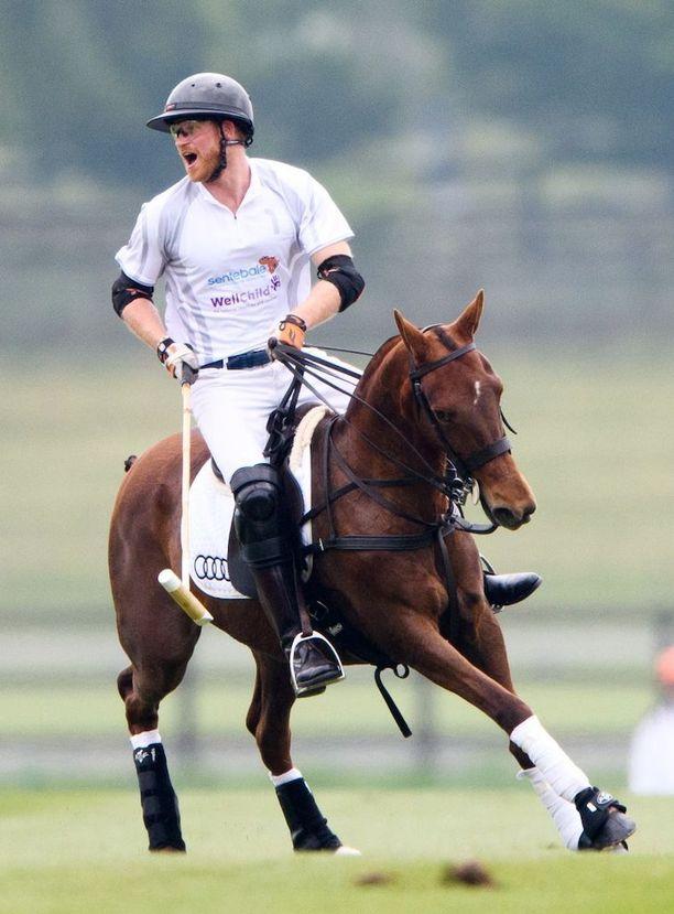 Prinssi Harry on innokas hevospoolopelaaja.