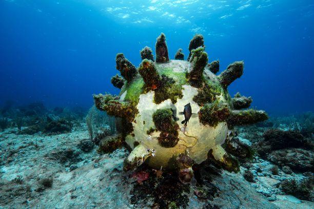 Tämä aikapommi on yksi Meksikon vedenalaisen taidemuseon teoksista. Kasvillisuuden on tarkoituskin peittää veistokset.