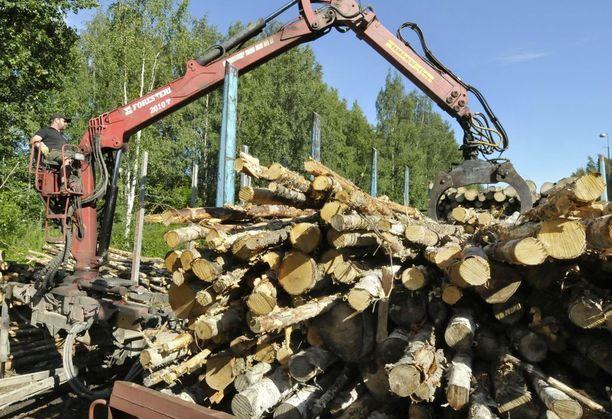 Metsäteollisuus tuo Venäjältä noin kymmenen miljoonaa kuutiometriä puuta vuodessa. Tämä kuva ei liity Venäjän tuontiin.