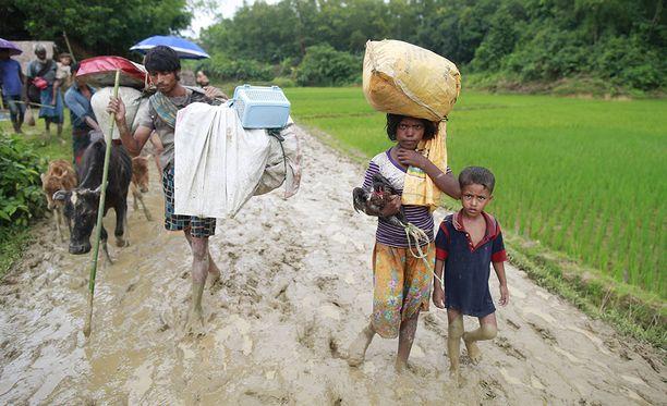 Nämä Rohingya-vähemmistöön kuuluvat pääsivät rajan yli Bangladeshiin.