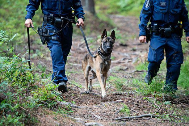 Poliisi on etsinyt naista koirien avulla läpi yön. Kuvituskuva.
