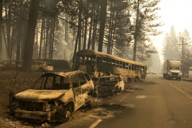 Paradisen asukkaat joutuivat hylkäämään autojaan ja pakenemaan nopeasti leviäviä liekkejä lapset sekä lemmikit käsivarsillaan.