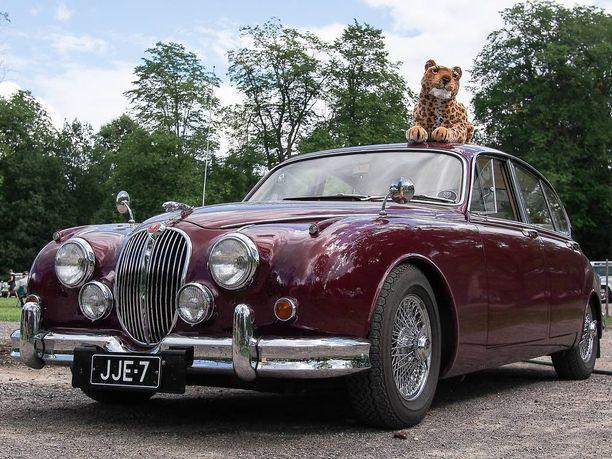 Jaguar Mark 2 kissapeto katollaan Britit kohtaavat 2013 -tapahtumassa.