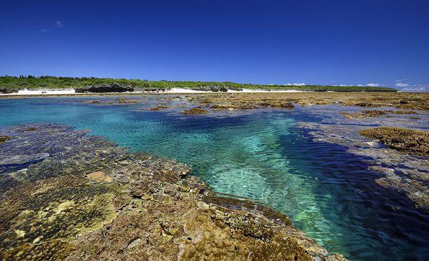 Kuva Japanin Okinawan koralliriutoista, joiden arvioidaan myös olevan vaarassa.
