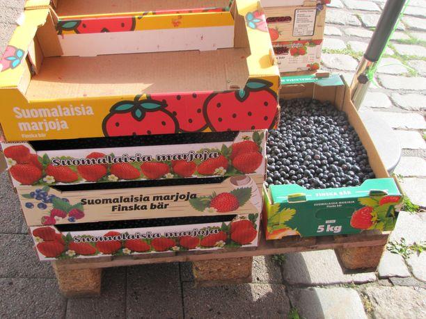 Torikauppiaat epäilevät, että osa myyjistä täyttää suomalaisten marjojen laatikot ulkomaisilla mustikoilla Tammelantorilla.