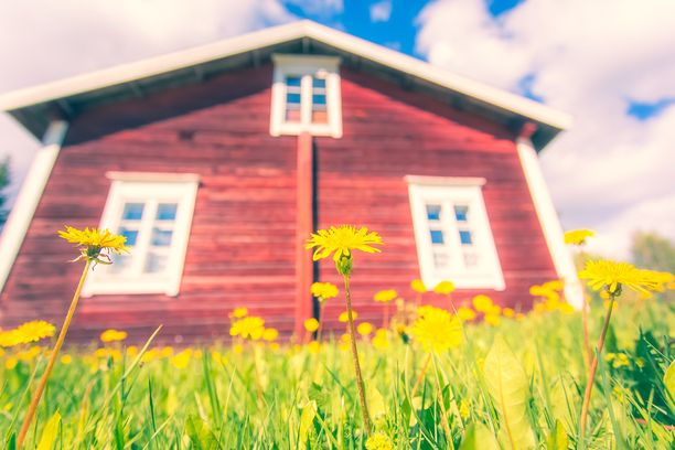 Salaojaremontti kannattaa teettää kesäaikaan, kun maa on sula.