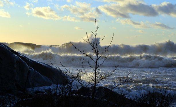 Näin kovat tuulet riepottelivat Poria viime vuonna.