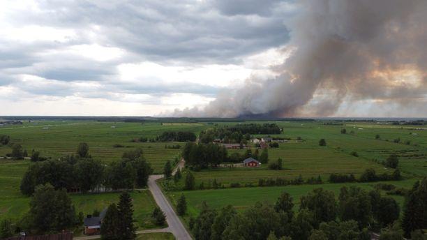 Muhoksen metsäpalo kuvattuna kaupungin keskustasta käsin.