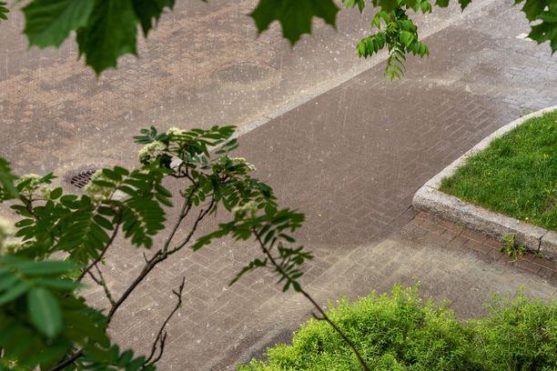 Viikonlopun sää vaikuttaa uusimman ennusteen mukaan vaihtelevalta.