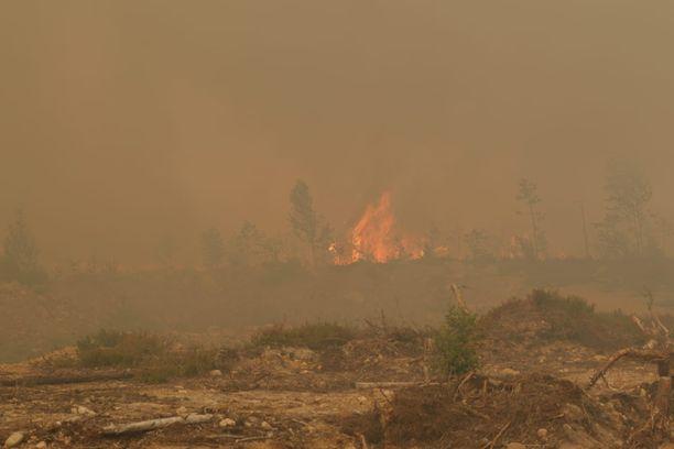 Kangastien mukaan pienempi paloalue on kooltaan yhdeksän hehtaaria ja suurempi 35 hehtaaria.