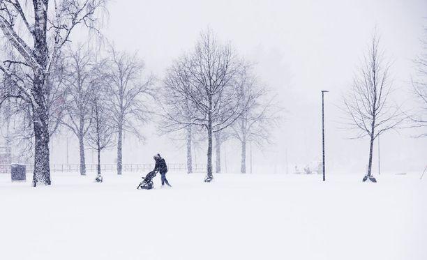 Hyytävä pakkanen saavuttaa Suomen sääennusteen mukaan ensi viikon tiistaina. Etelä-Suomessa pakkanen voi painua 30 asteen yöllä, mutta pohjoisessa jo alkuillasta, kun aurinko laskee.