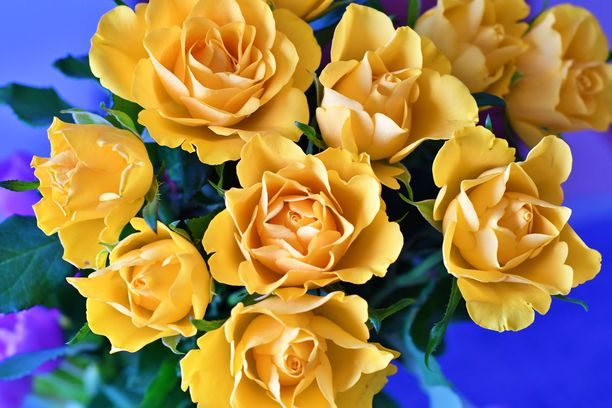 Keltainen kuvastaa energiaa ja iloa.
