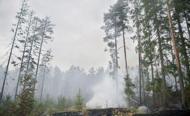 Maastoa on palanut kesän mittaan Lapissa monin paikoin. Tulta ei saa nyt tehdä. Arkistokuva.
