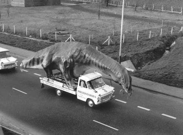 Mallintekijät Kentissä iskivät valtavan Cetiosauruksen Transitiin. Saurus oli menossa luonnonpuistoon.