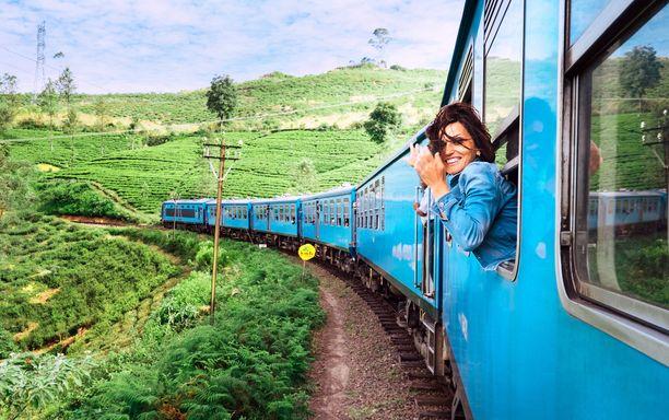 Hyvinä aikoina junat kuljettivat turisteja kauniiden teeviljelysten läpi.