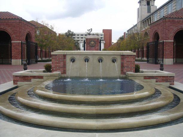 Gynekologi työskenteli yliopistolla vuodesta 1989 lähtien.