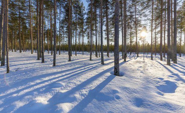 Ilmatieteen laitoksen mukaan maaliskuun sää oli muutamaa astetta tavanomaista kylmempi.