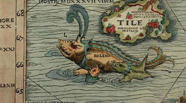 Näin ruotsalainen Olaus Magnus kuvasi hetulavalaan vuoden 1539 Carta marinassa.