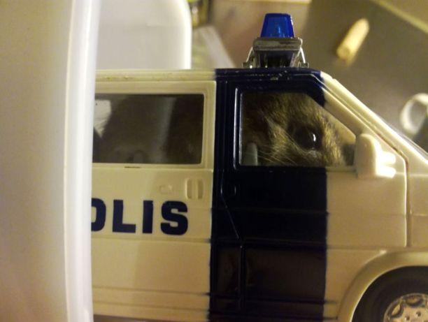 Hiiren vierailu Reimanien kotona päättyi poliisiauton suojiin.