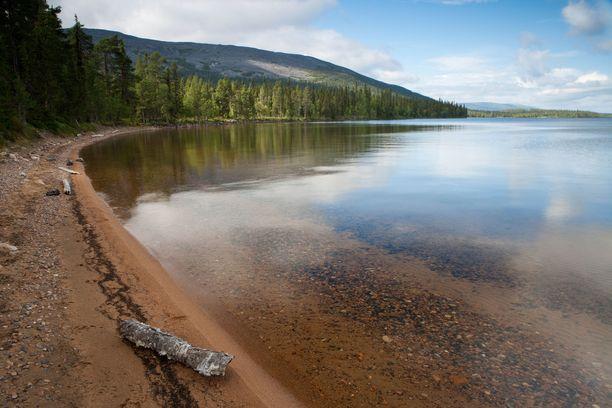 Pallasjärven vesi on kirkasta kuin lasi.