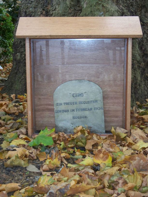 Saksasta saapuneen Giro-terrierin hauta on muisto kolmannen valtakunnan ajoilta.