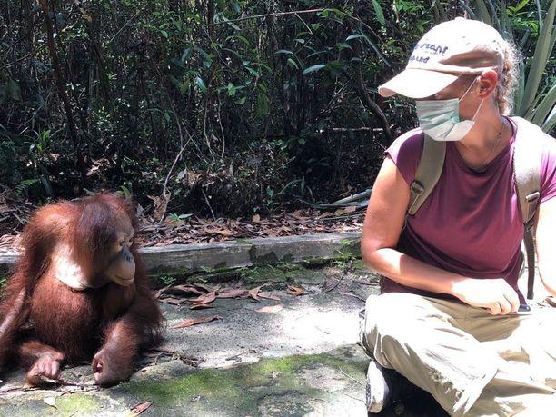 Maaliskuussa Johanna Elomaa tapasi Borneon Kalimantanin keskuksessa sinne juuri tuodun vauvaorangin.