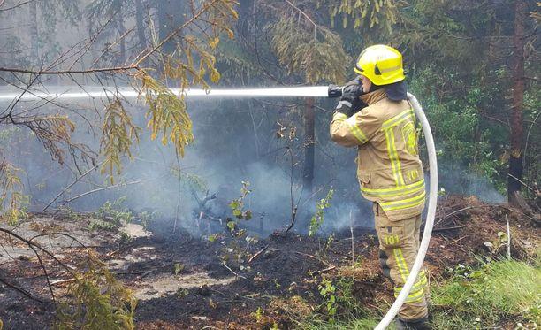 Paloa ei ole vielä saatu hallintaan. Arkistokuva kesäkuussa roihunneesta Auran maastopalosta.